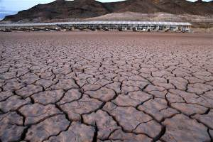 Dry Basin